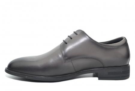 Pantofi Barbati Piele Naturala Gri Ernest B000481