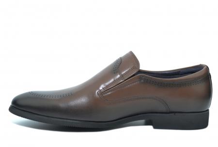 Pantofi Barbati Piele Naturala Maro Earl B000461
