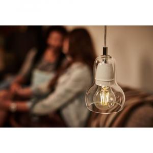 Bec LED Vintage Lumina Calda  800 Lumeni E27 6.5W [2]