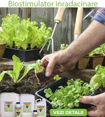 Biostimulator natural de înrădăcinare