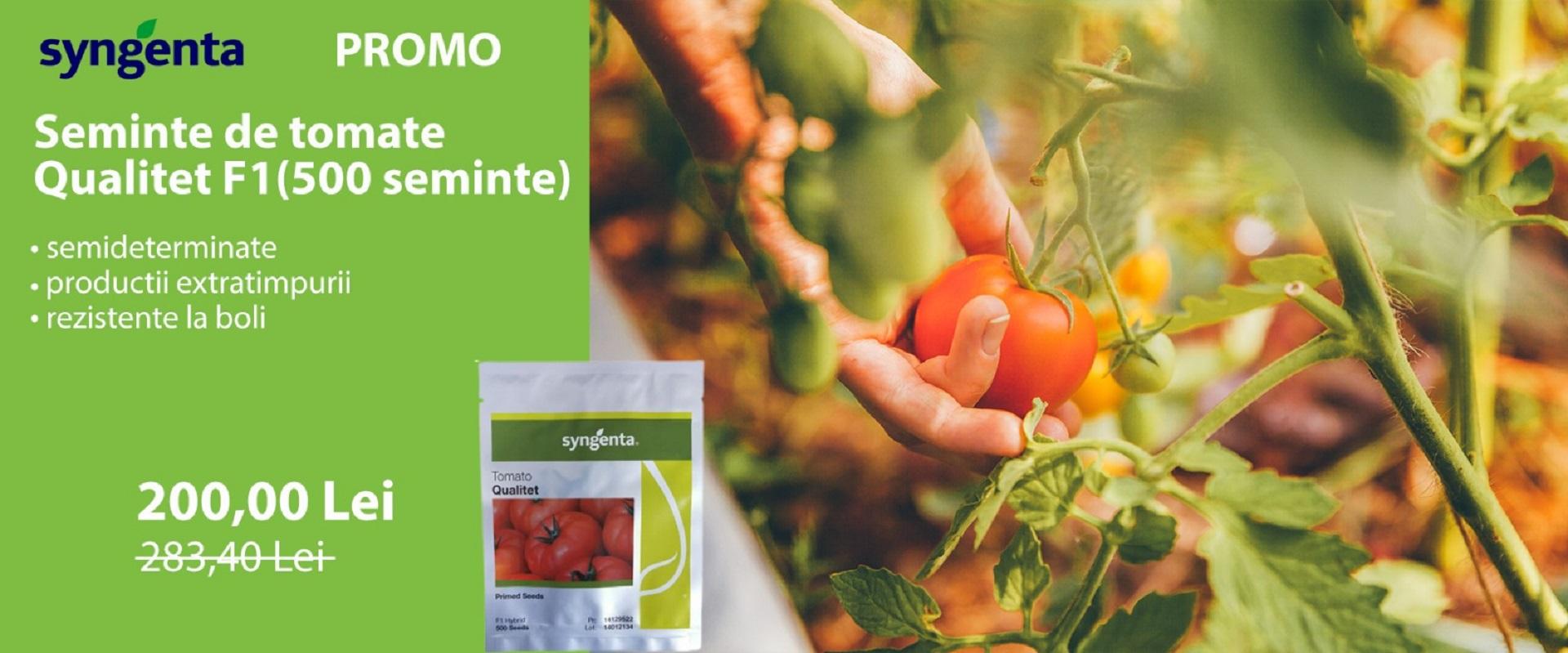 Promo tomate Qualitet