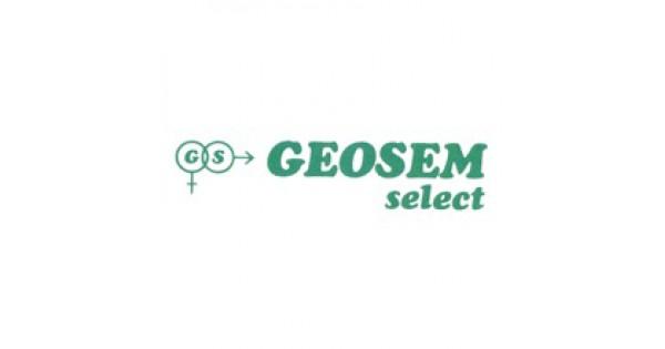 GEOSEM SELECT