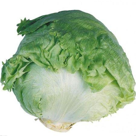 Seminte de salata Aviram-1000 seminte [0]