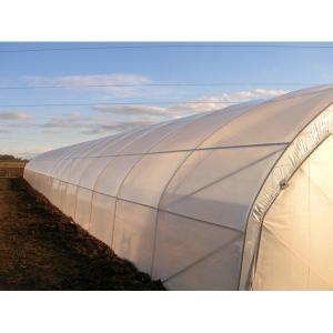 Folie solar aditivată 2501 P.K. 180µ - durată de viață de pâna la 6 ani0
