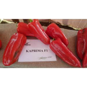 Seminte de ardei kapia Kaprima F1 (500 seminte)1