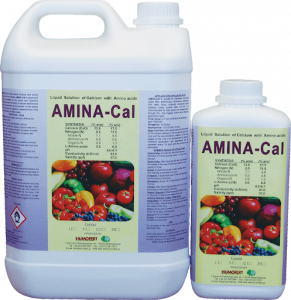 Solutie lichida de calciu AMINA CAL0