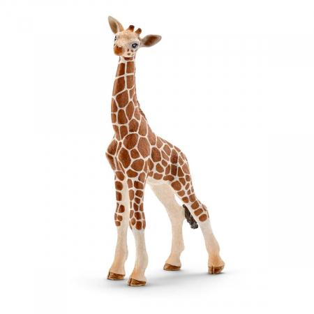 Girafa, pui - Figurina Schleich 147510