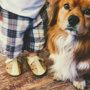 Sandale cu talpă moale Liliputi® - Peanut Butter2