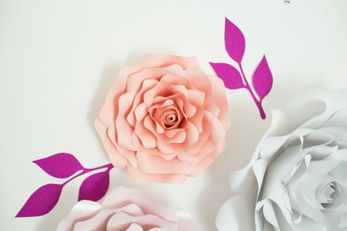 Decor Rose 2