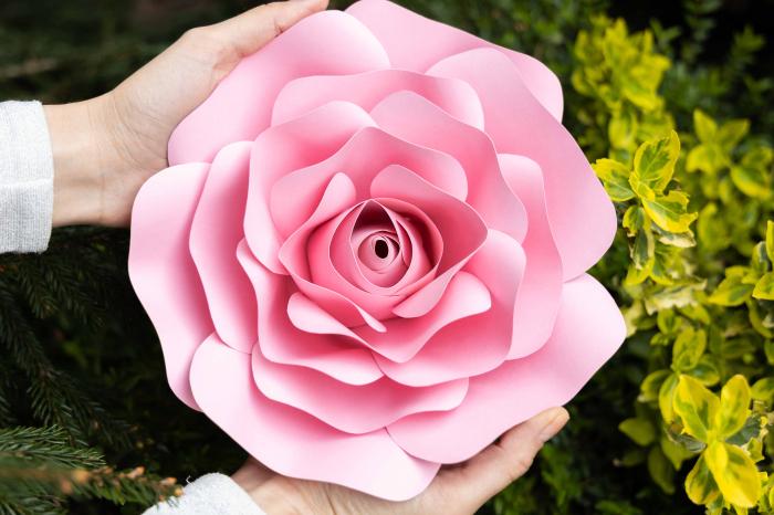 Decor Rose 5