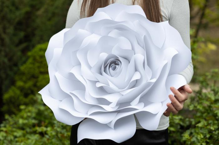 Decor Rose 4