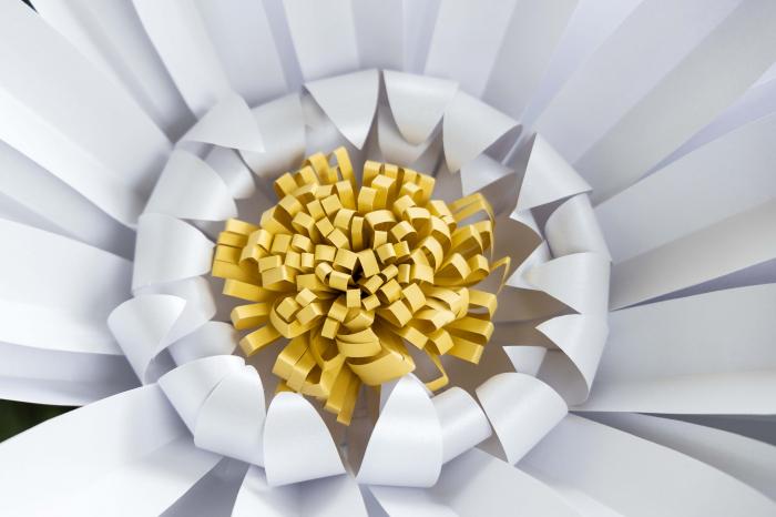 Model floare DaisyXL - 52 cm 2