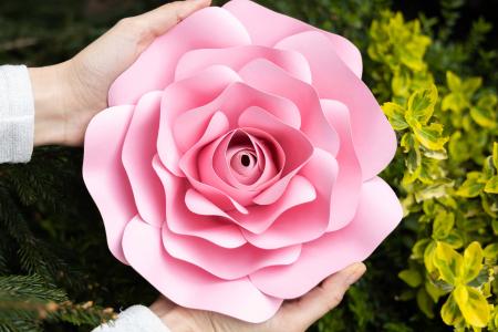 Decor Rose5