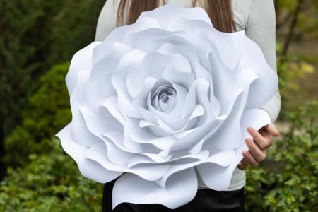 Decor Rose4
