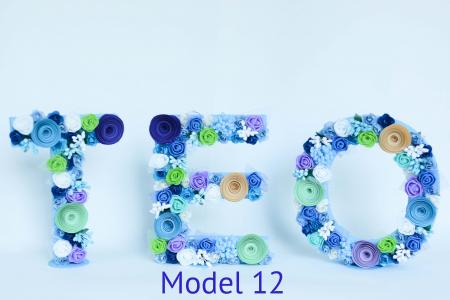 Litere decorate - Băieței11