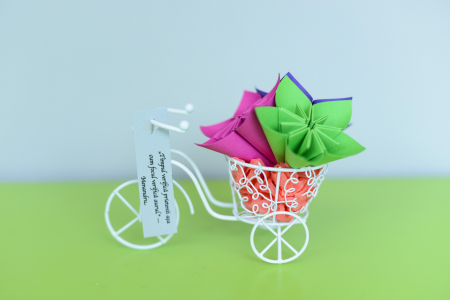 Mărturie - Bicicletă [3]