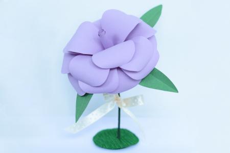 Mărturie - Trandafir hârtie0