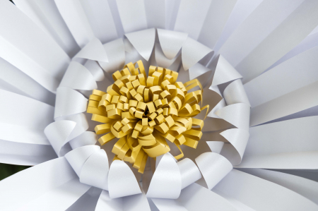 Model floare DaisyXL - 52 cm2