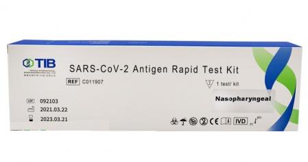 Test-Rapid-Antigen-Nazofaringian-COVID-19-Triplex-1-Buc [0]