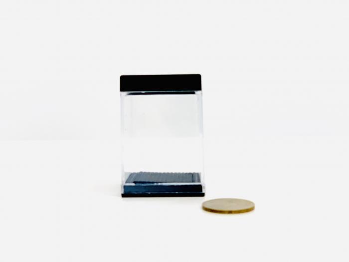 Aparitie moneda 2