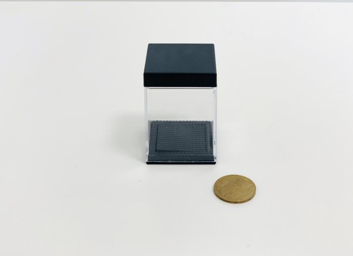 Aparitie moneda 1