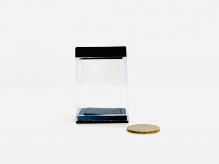 Aparitie moneda2