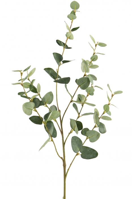 "<span class=""title-long"">Crenguta artificiala Eucalyptus, Fibre artificiale, Verde, 85 cm</span>"