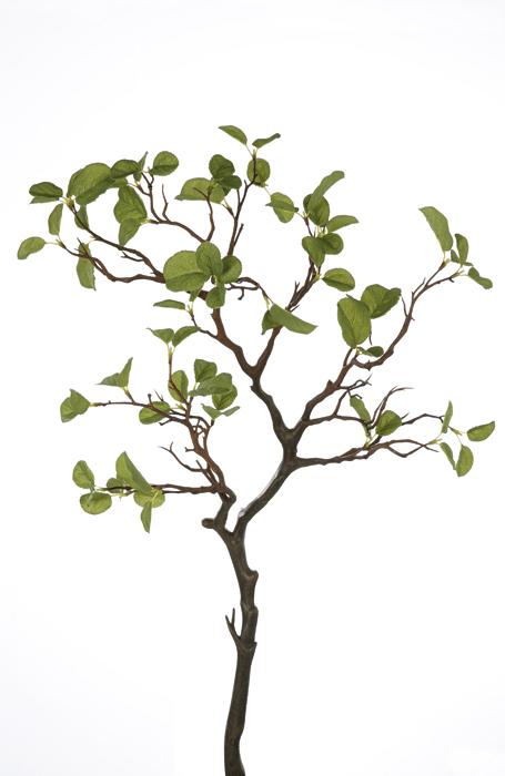 Crenguta cu frunze verzi GILDE, fibre sintetice, 80 cm 0