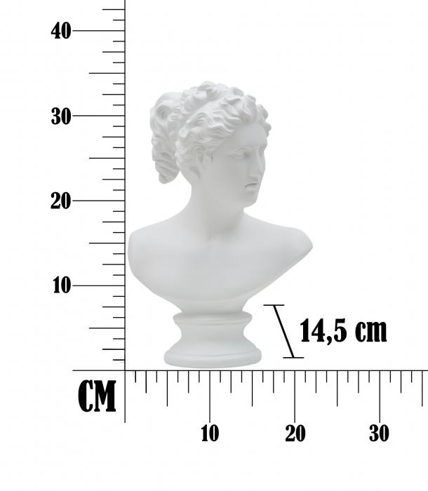 Figurina ROMAN WOMAN CM 21,5X14,5X34, Mauro Ferretti [5]