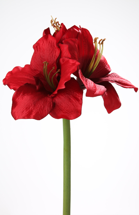 Floare AMARYLLIS, fibre sintetice, 50 cm 0