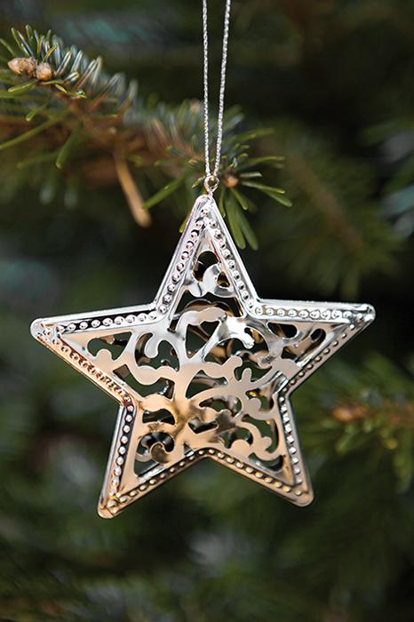 Ghirlanda stea Natale, Metal, Argintiu, 0.50x11x14 cm lotusland.ro
