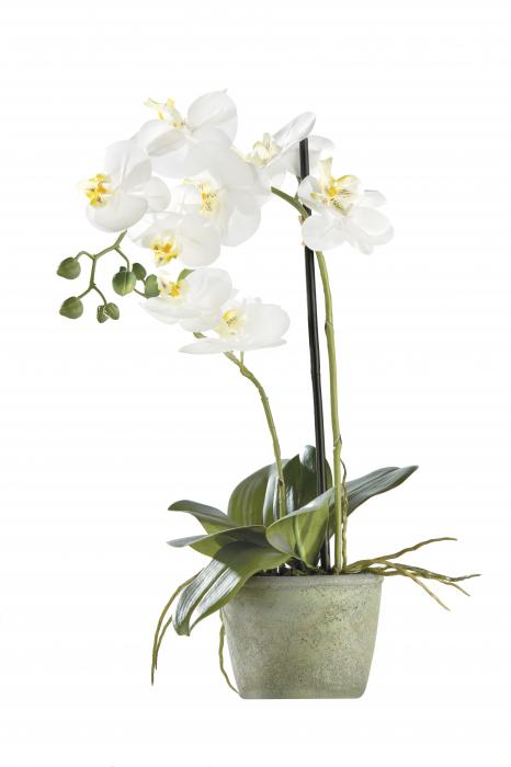 Orhidee la ghiveci, artificial, alb, 52x13.5 cm 0