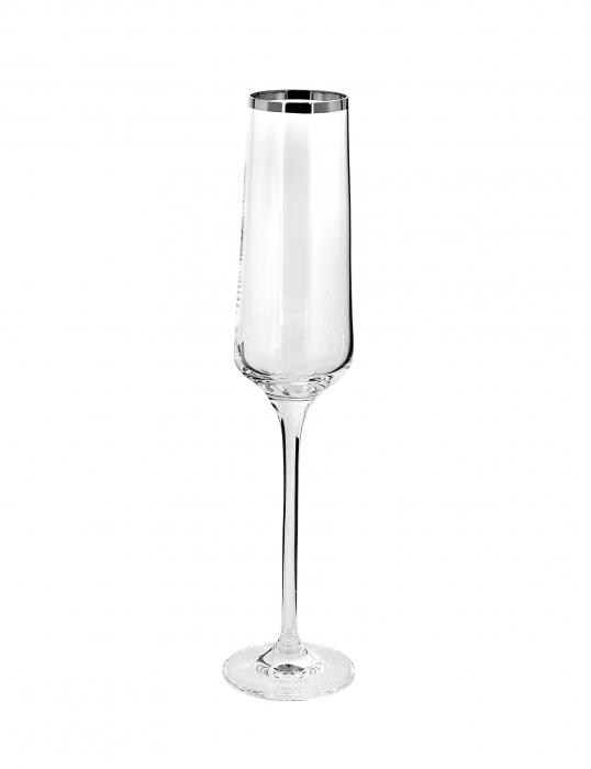 Pahar pentru sampanie PLATINUM, sticla, 26x6 cm 0