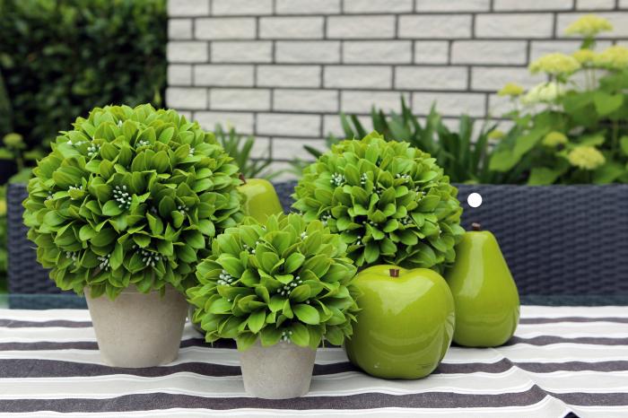 Planta decorativa la ghiveci de exterior Leaf Ballin, verde, 24x22 cm