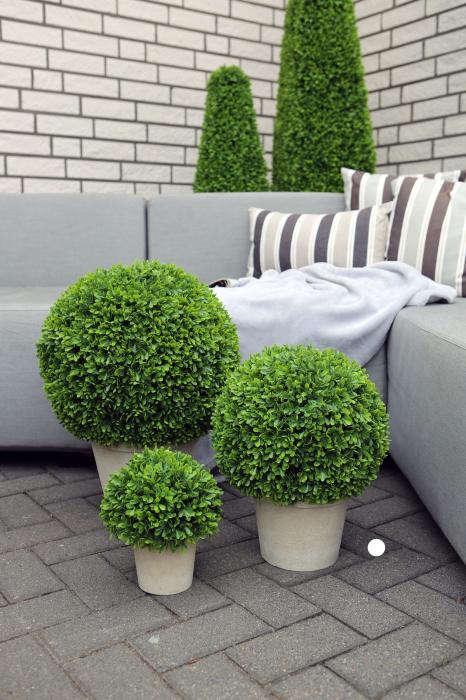 Planta decorativa la ghiveci de exterior Buxusballin, verde, 39x30 cm lotusland.ro