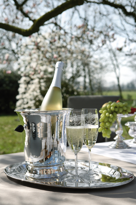 Recipient racitor vin Vienna, Alama Placat cu argint, Argintiu, 2021 lotusland.ro