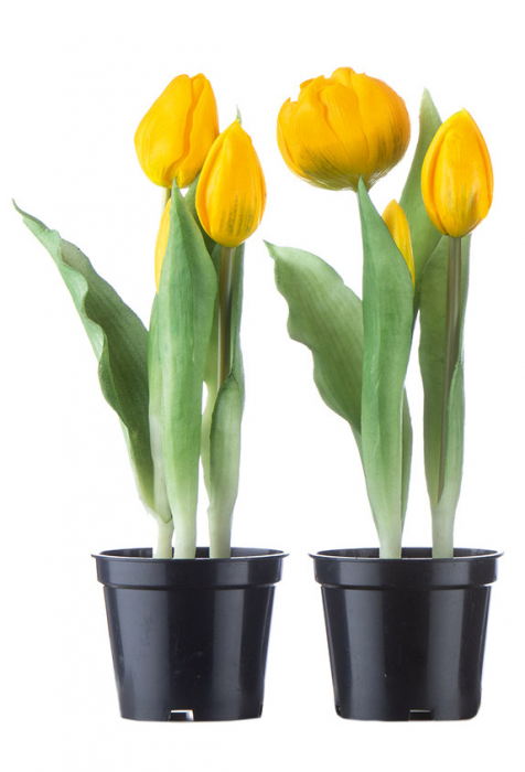 Set 2 ghivece cu lalele, artificial, galben, 24x7.5 cm lotusland.ro