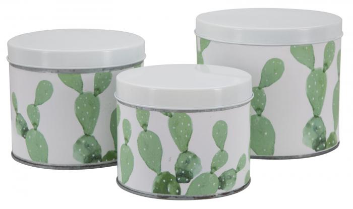 Set 3 cutii Cactus, fier, alb verde, 15X13.5-14X11.5-12.5X10 cm imagine 2021 lotusland.ro
