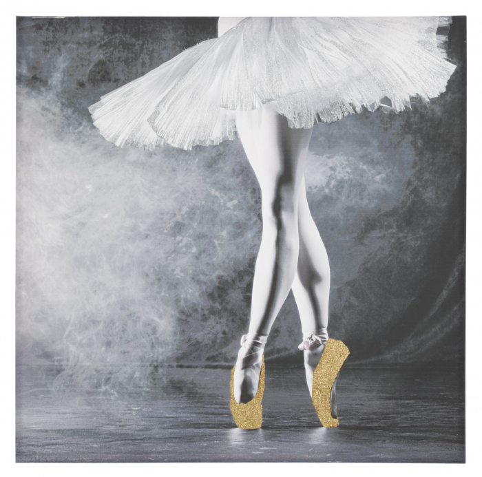 Tablou Ballerina, lemn de pin panza, multicolor, 100X3.8X100 cm lotusland.ro