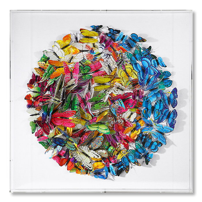 Tablou BUTTERFLY, 60x60x6 cm 0