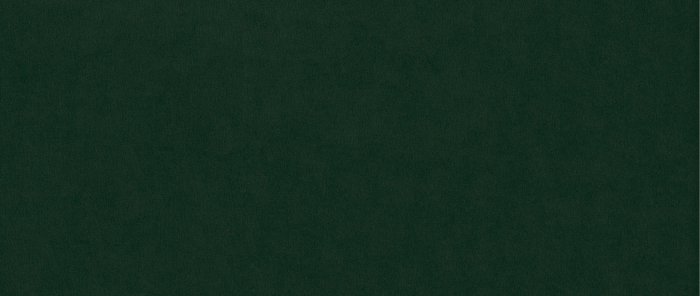 Taburet pentru picioare Clara, Verde inchis, 60x40x50 cm 2