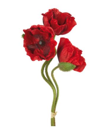 Crenguta artificiala de mac cu 3 flori MOHN, rosu, 70 cm, Fink0