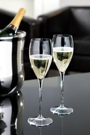 Pahar pentru sampanie SALVADOR, sticla, 26x7.3 cm3