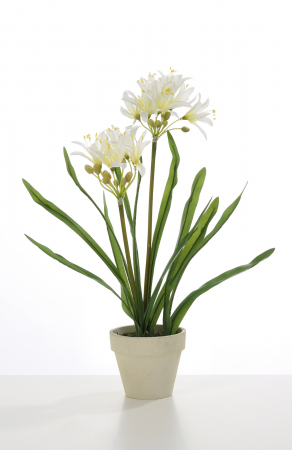 Planta la ghiveci Agapanthus, artificial, alb, 38 cm0