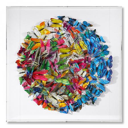 Tablou BUTTERFLY, 60x60x6 cm0