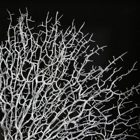 Tablou TREE OF LIFE, 60x50x4.5 cm2