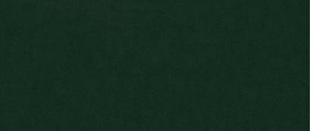 Taburet pentru picioare Clara, Verde inchis, 60x40x50 cm2