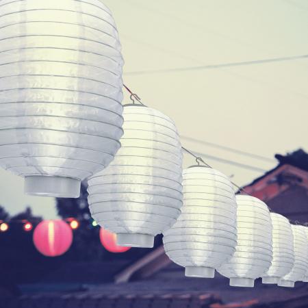 Garden of Eden - Lampion solar cu LED alb, alb rece 21 cm1