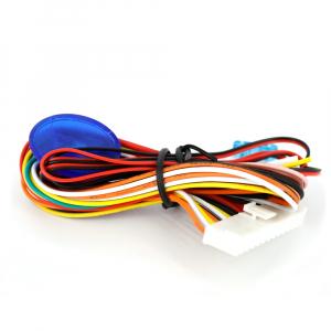 CARGUARD - Închidere centralizată - cu telecomandă2