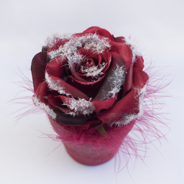 Floare decorativa in ghiveci, rosie [0]